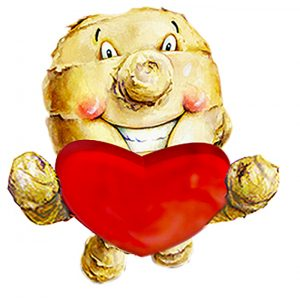 The Ginger People Mascot - Mr. Knobs - Valentines Day