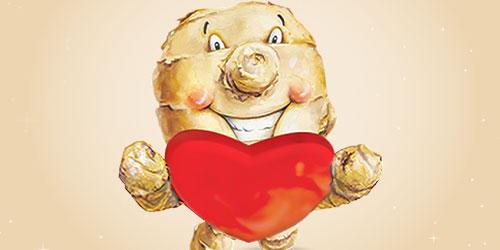Love Ginger, Love Your Heart