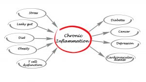 chronic inflammation - ginger